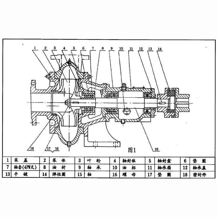 pw无堵塞排污泵结构图